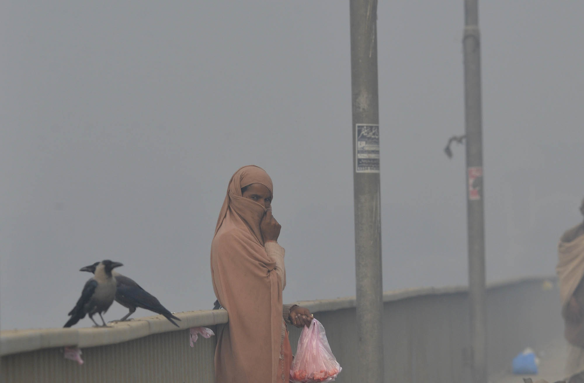 A smoggy day in Lahore | M.Arif/White Star