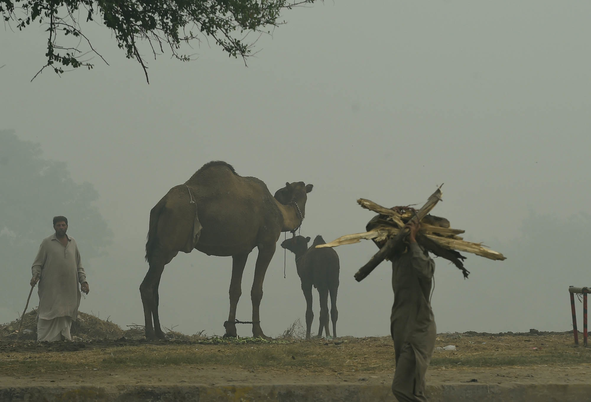Smog on the outskirts of Lahore | M.Arif/White Star