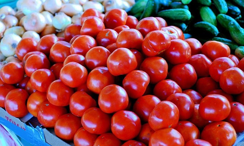 Traders on Saturday increased the per kilogram price of tomato to Rs300-320 from Rs240-250 per kg even before the arrival of Iranian tomato in Karachi markets. — Wikimedia Commons/File