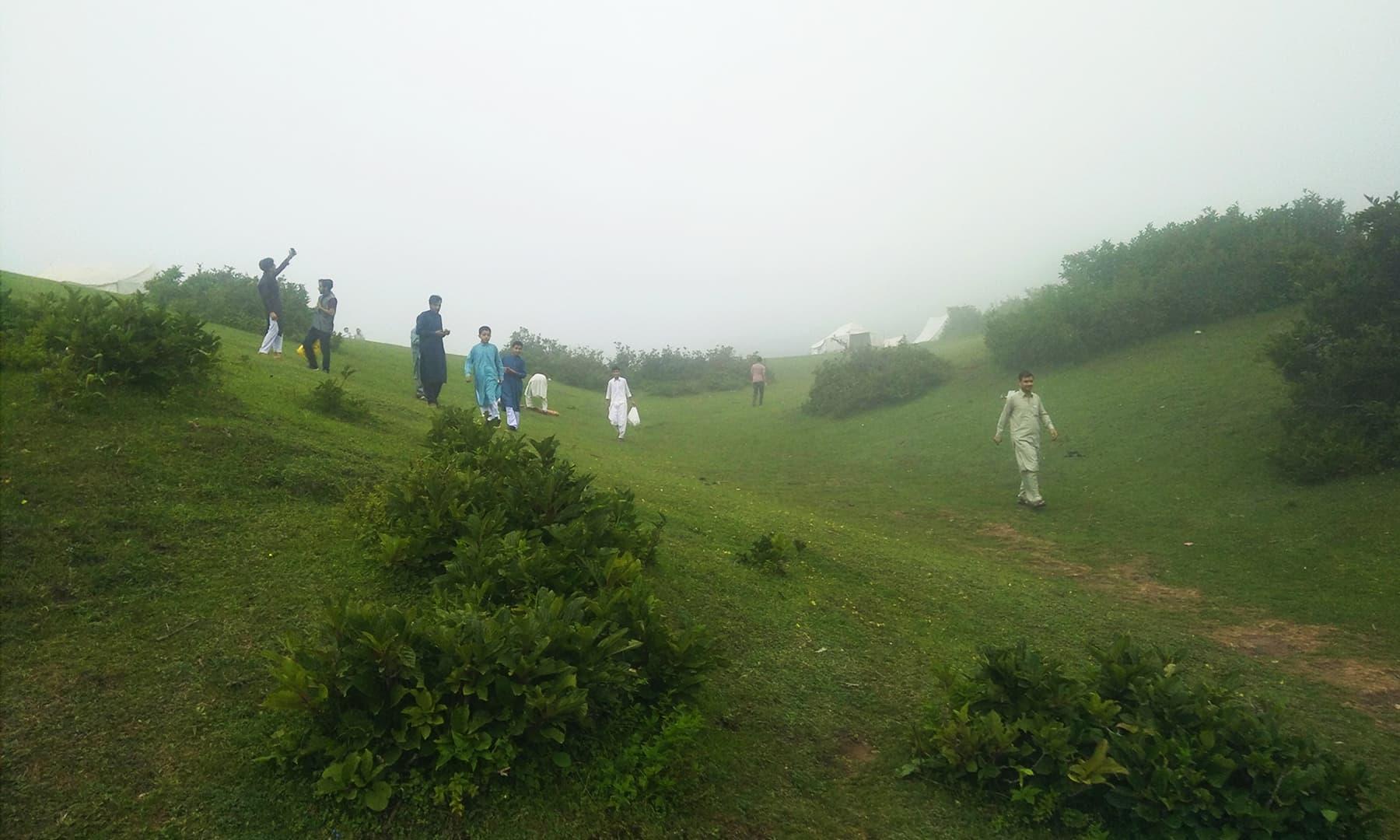 سرسبز پہاڑی میدانوں کا نظارہ— عظمت اکبر