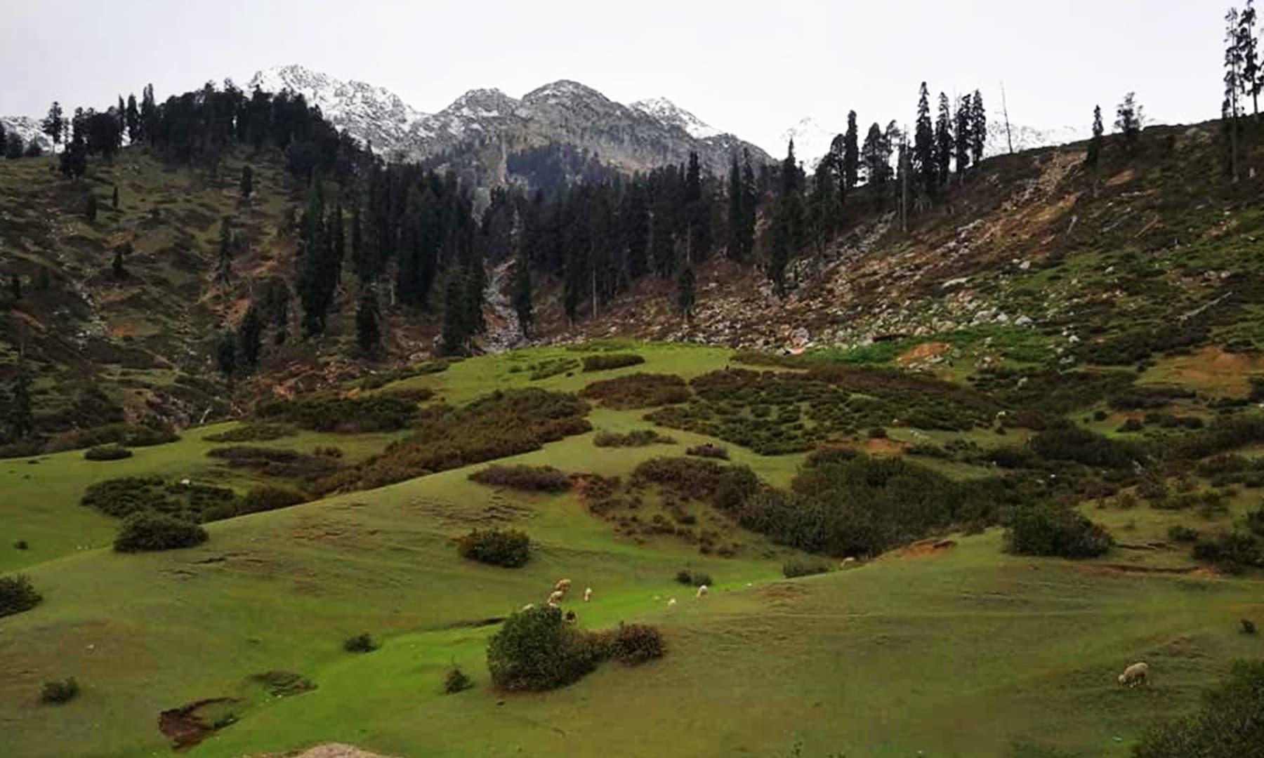 گبین جبہ کو درال جھیل اور درال پاس کے ٹریک کا نکتہ آغاز بھی تصور کیا جاتا ہے—عظمت اکبر