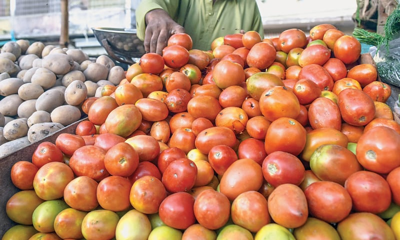 Tomato price hits record high at Rs400 a kilo in Karachi