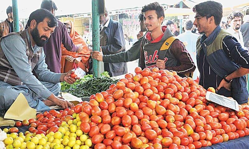 تاجروں کے مطابق ایران سے درآمد کیے گئے ساڑھے 4 ہزار ٹن ٹماٹر میں سے اب تک 989 ٹن ٹماٹر پاکستان پہنچ چکے ہیں — فائل فوٹو: اے پی پی