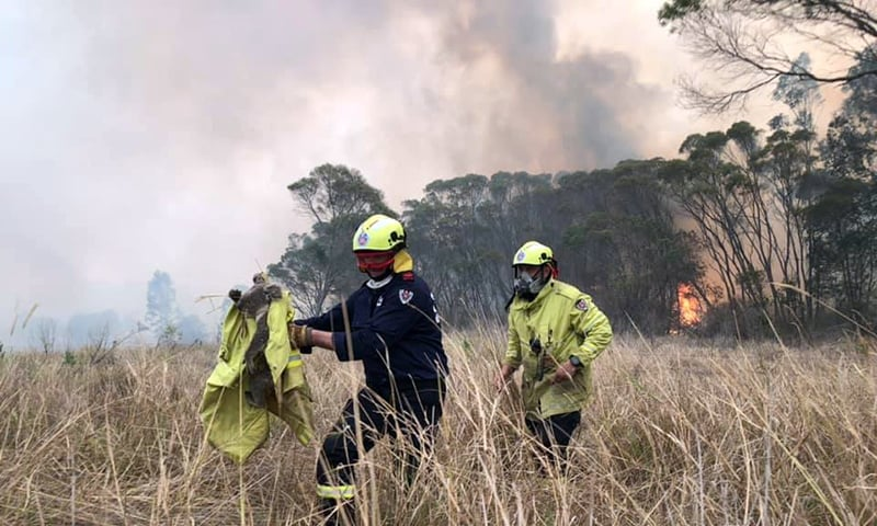 Bushfire smoke shoots Sydney into top 10 global pollution index