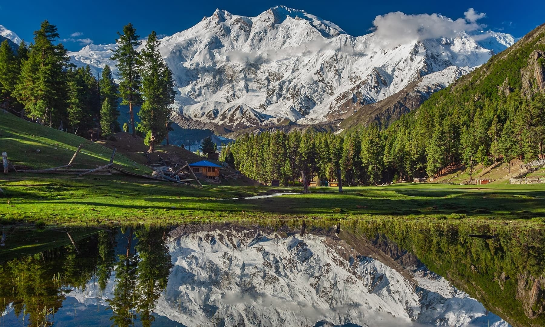 Fairy Meadows. — Photo by Syed Mehdi Bukhari