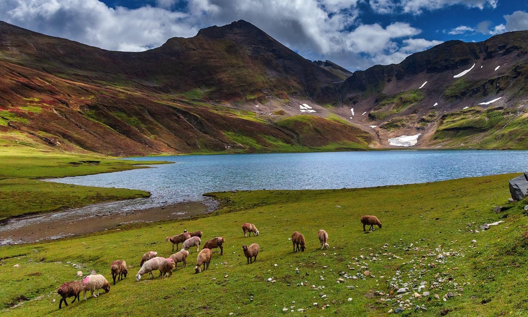 Dudipatsar Lake. — Photo by Syed Mehdi Bukhari