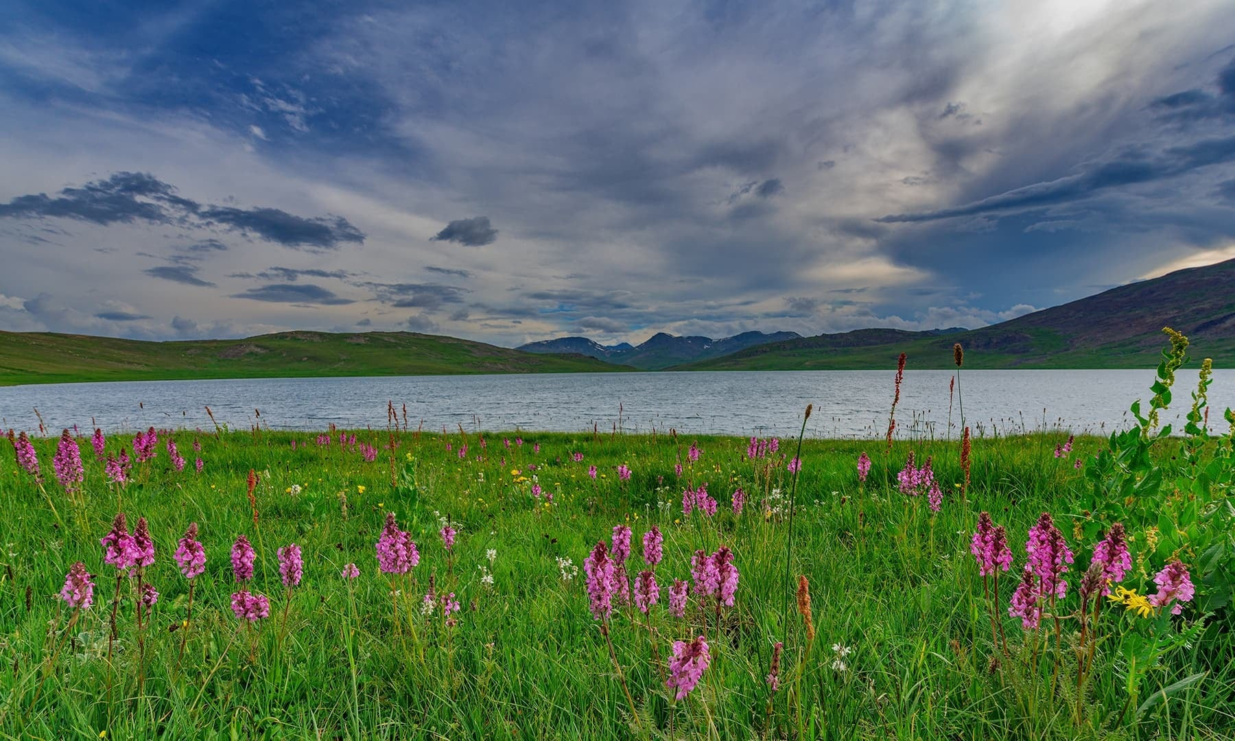 On the edge of Sheosar Lake. — Photo by Syed Mehdi Bukhari
