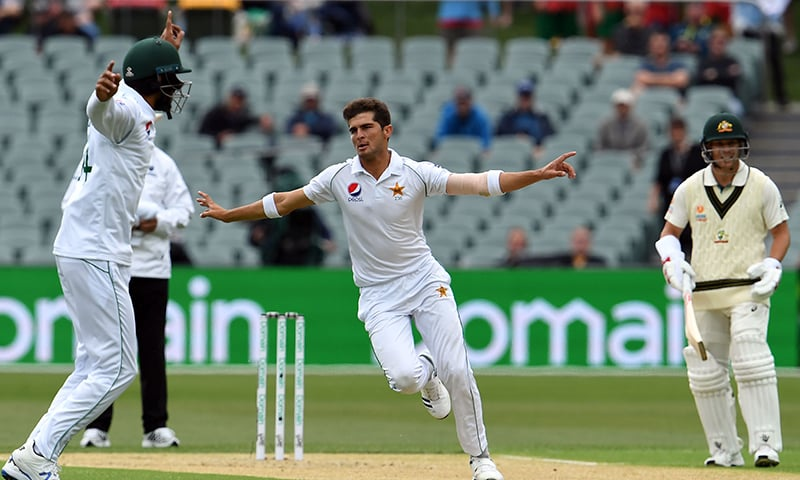 Paceman Shaheen Afridi celebrates the wicket of Australia's Joe Burns on day one of the second cricket Test match between Australia and Pakistan in Adelaide on November 29, 2019. — AFP