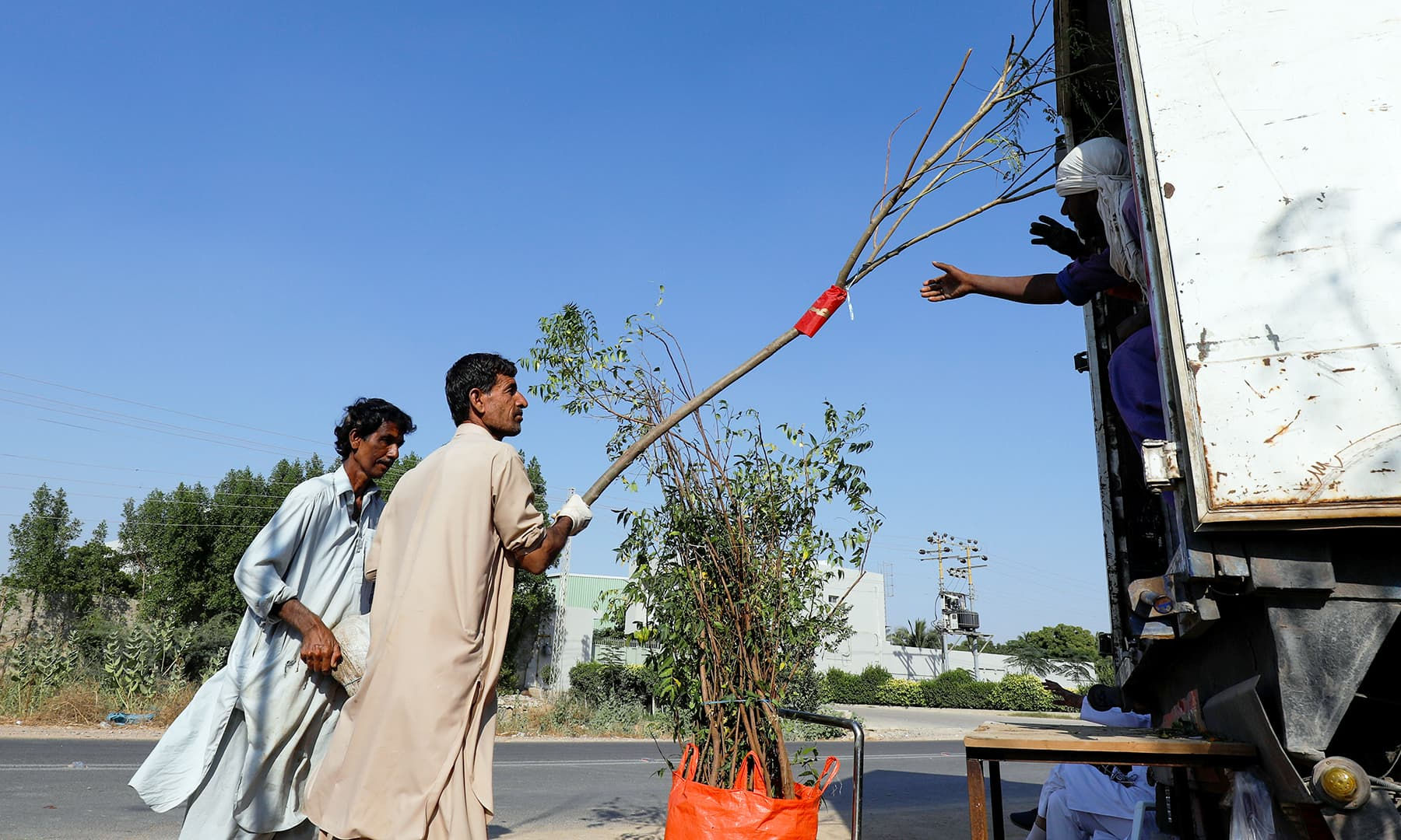 Labourers load a truck with trees and plants to be transported for planting along the pilgrimage route from Najaf to Karbala, at a farm on the outskirts of Karachi, on Friday. — Reuters