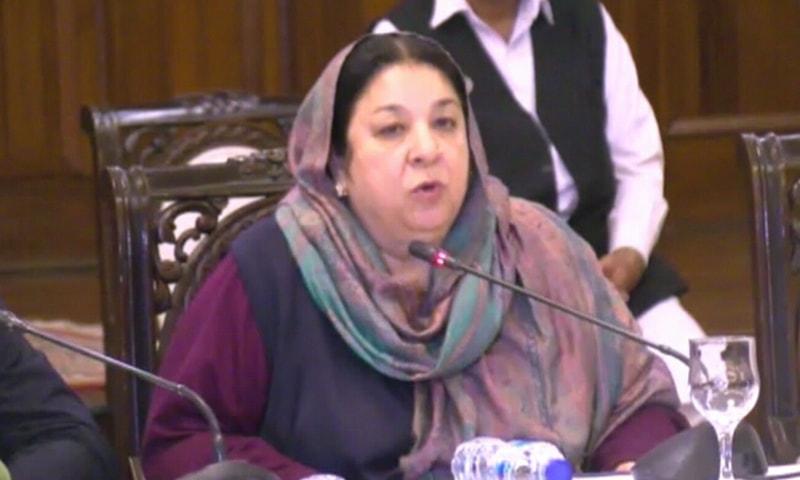Punjab health minister Yasmeen Rashid briefing the media. — DawnNewsTV