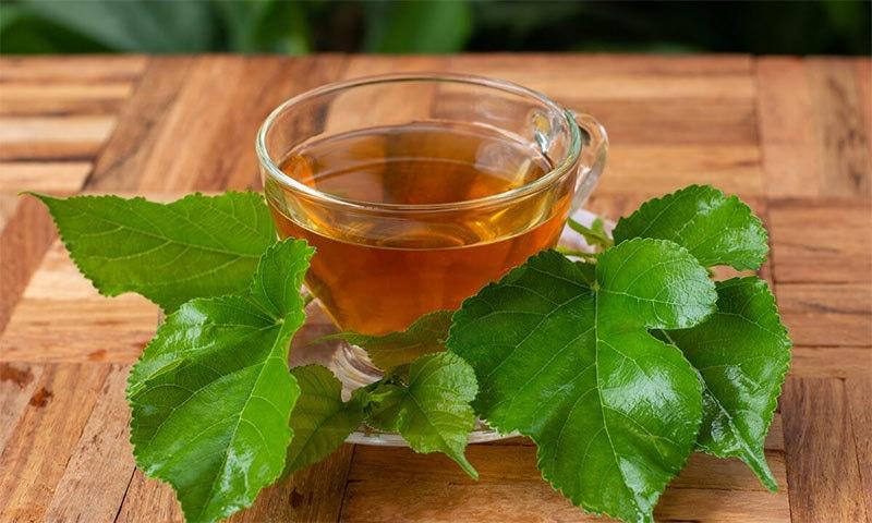 شہتوت کے پتے بھی صحت کے لیے فائدہ مند