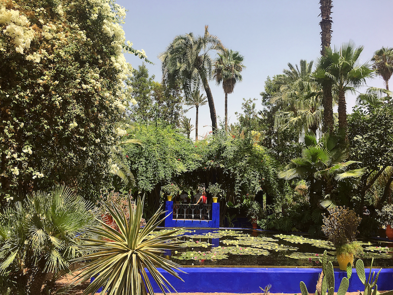 A section of the Marjorelle Garden.