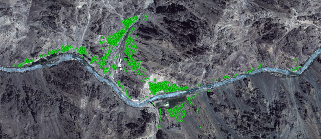 A satellite image on which Thomas identified over 1,100 robber holes in Afghanistan from which antiquities had been looted | Photo courtesy David C. Thomas