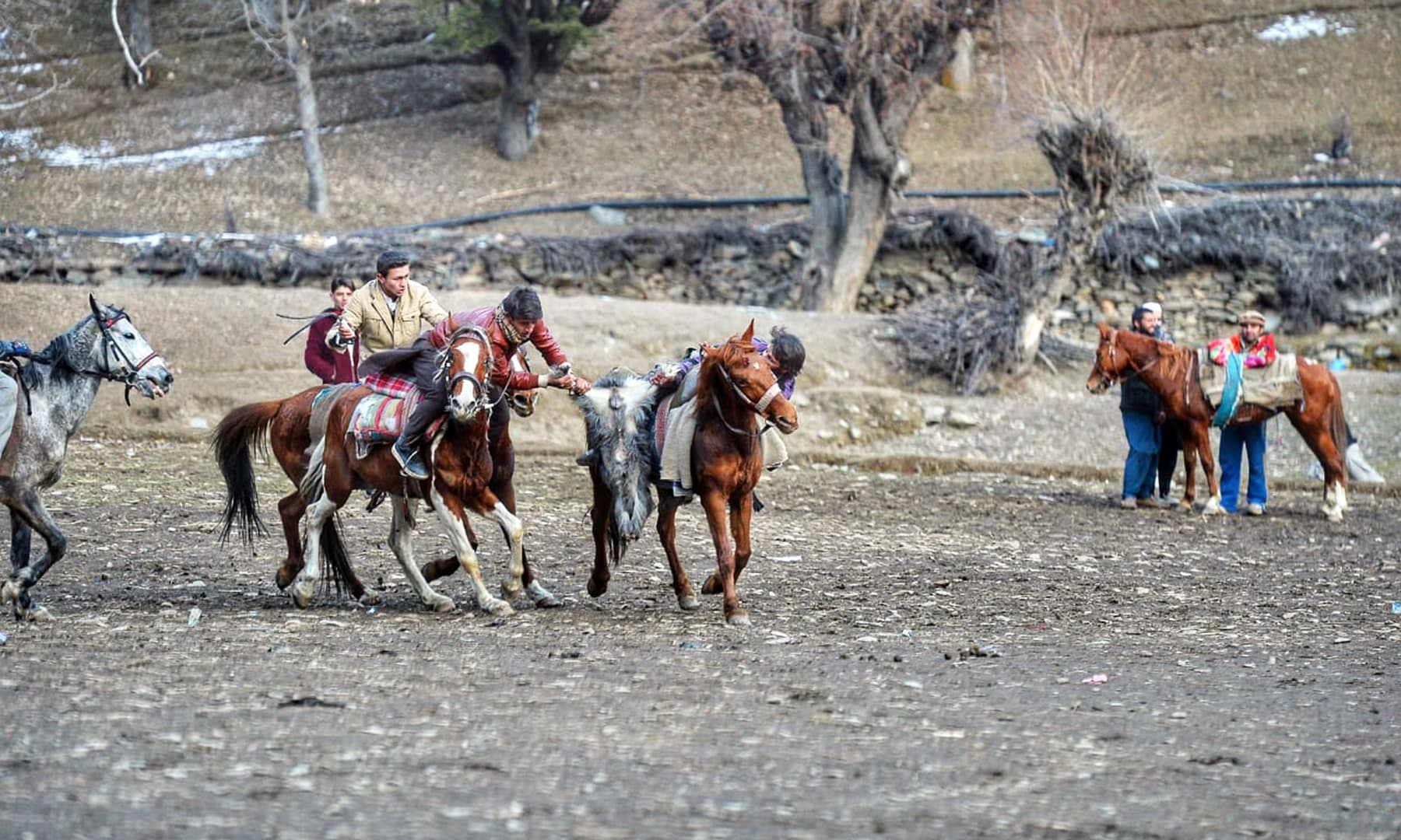 The sport involves horse-mounted players attempting to make a goal with a goat carcass.