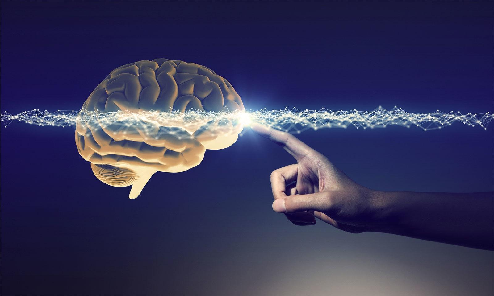 دماغ کے بارے میں وہ حیران کن معلومات جو 2019 میں معلوم ہوئیں