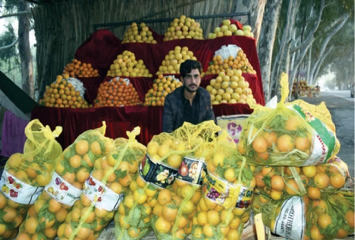 Mehmood Khan, 22, fruit vendor