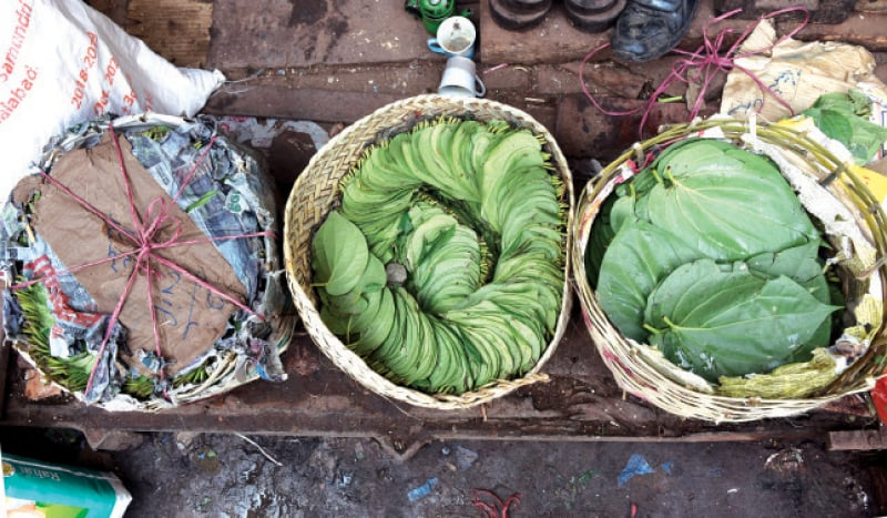 Baskets of betel leaves on display.