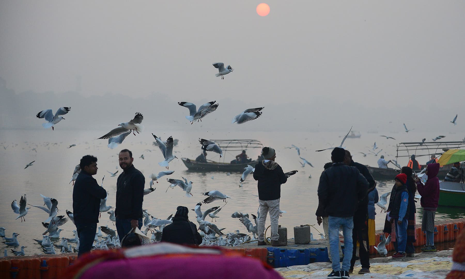 People feed seagulls ride during the last sunset of the year at the Sangam area, the confluence of the rivers Ganges, Yamuna and mythical Saraswati in Allahabad on Tuesday. — AFP