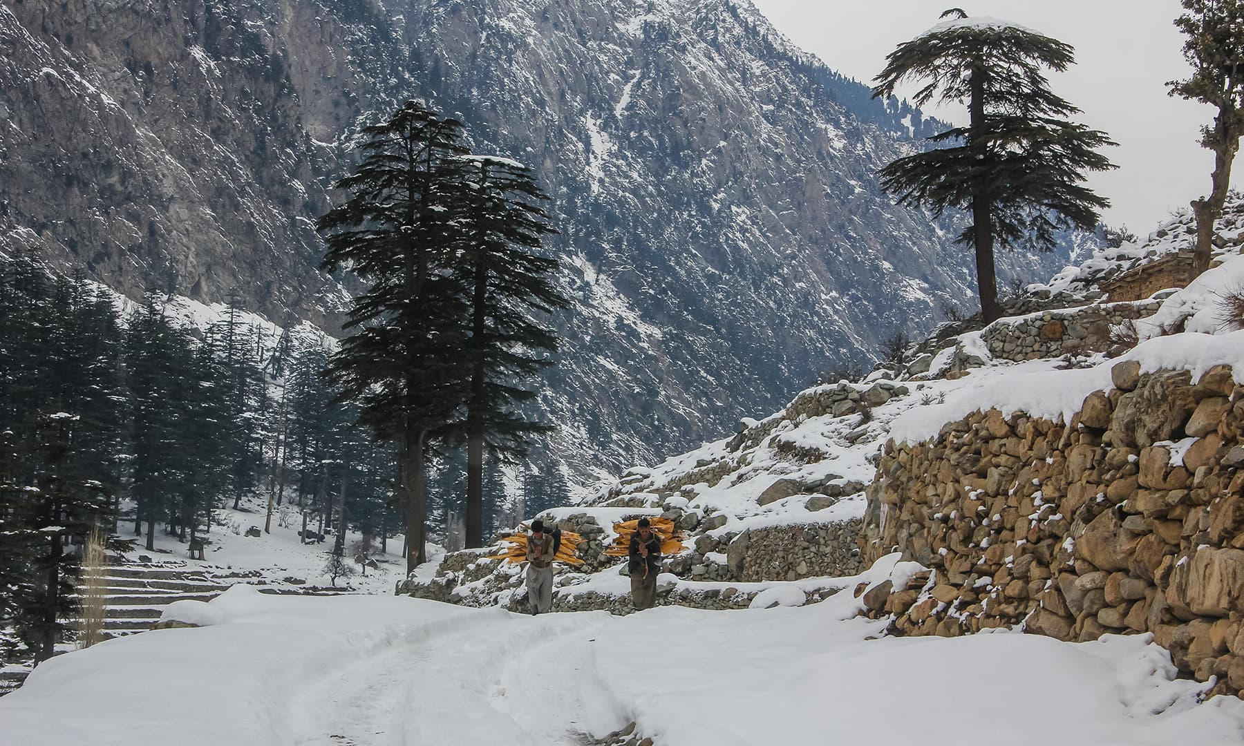 **Two men carry firewood after heavy snowfall blankets Kalam valley. — Photo by author**
