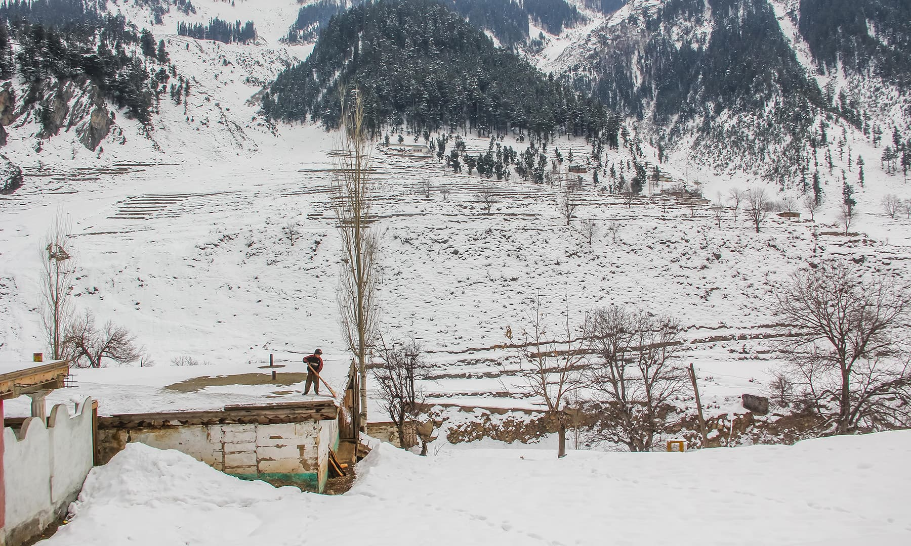 **A boy removes snow from the roof of his house in Kalam valley. — Photo by author**