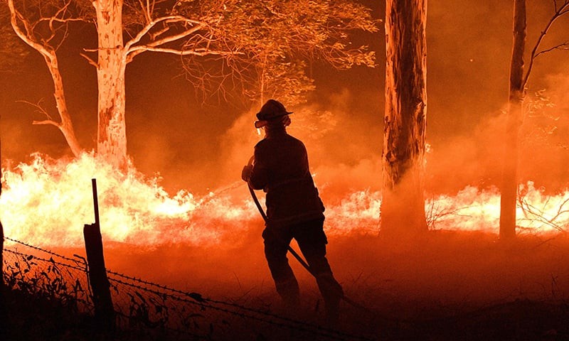This picture taken on December 31,2019 shows a firefighter hosing down trees and flying embers in an effort to secure nearby houses from bushfires near the town of Nowra in the Australian state of New South Wales. — AFP