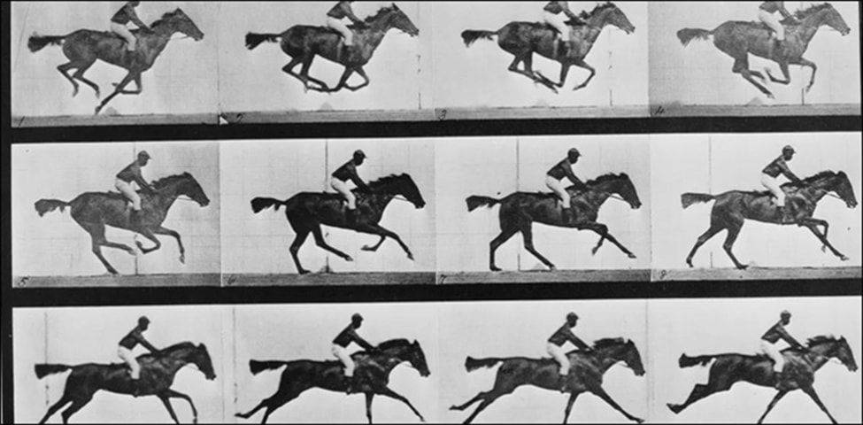 ایڈورڈ مائی برج کی اتاری ہوئی گھوڑوں کی تصویر