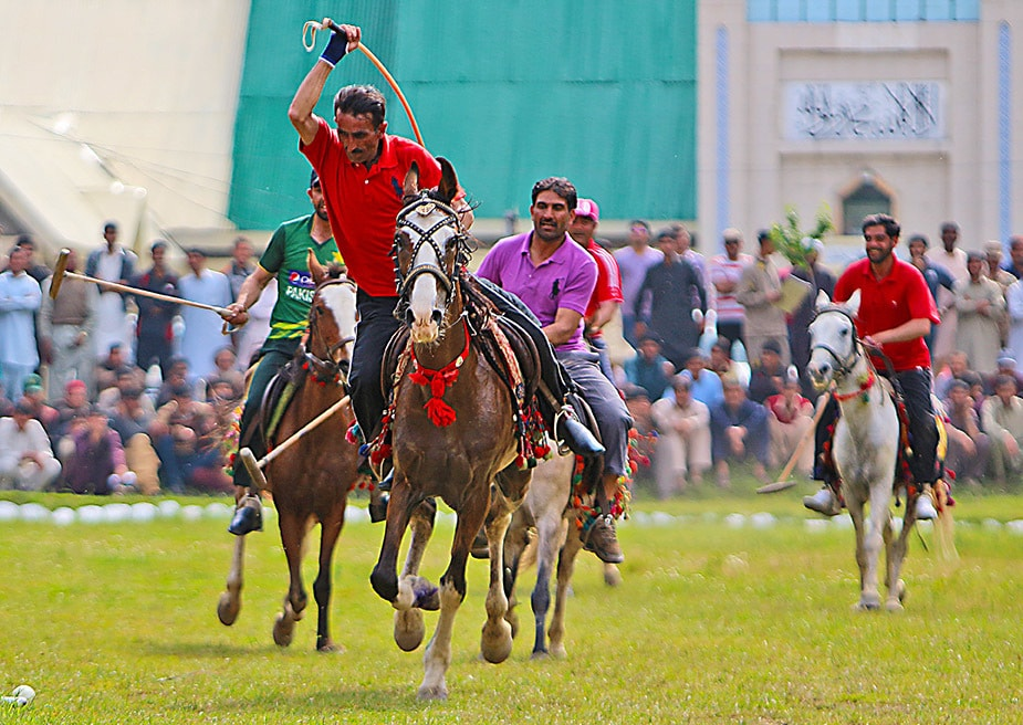 A polo match in the valley