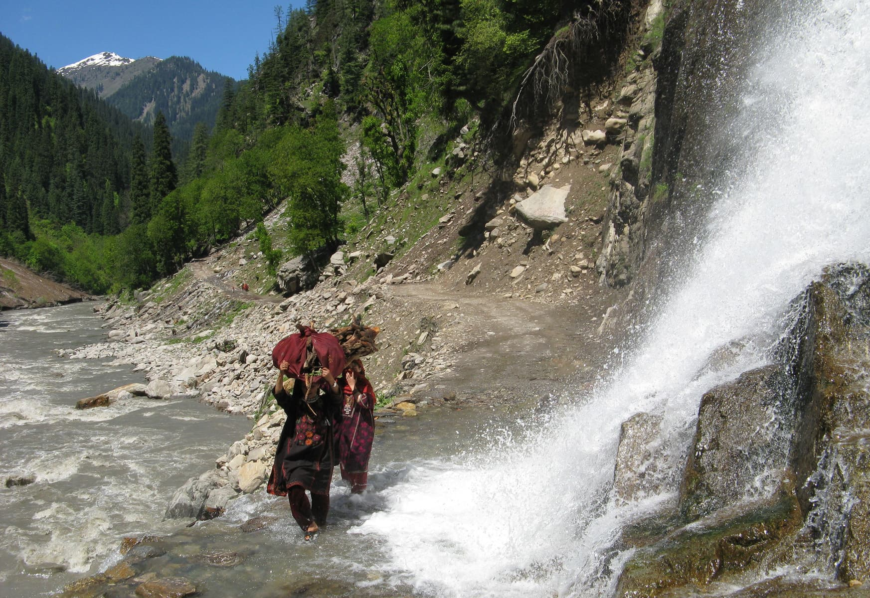 Kashmiri women carry firewood