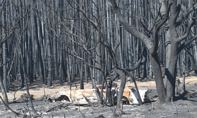 Australian govt pledges $1.4bn for fire-ravaged states, sends troops