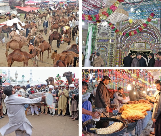 Clockwise from top (left) Camels in the field around the shrine, a view of the arch of Baba Fazal Shah Kaliami's shrine, snacks being prepared at the fair and drum beaters perform before a crowd of villagers. — Photos by the writer