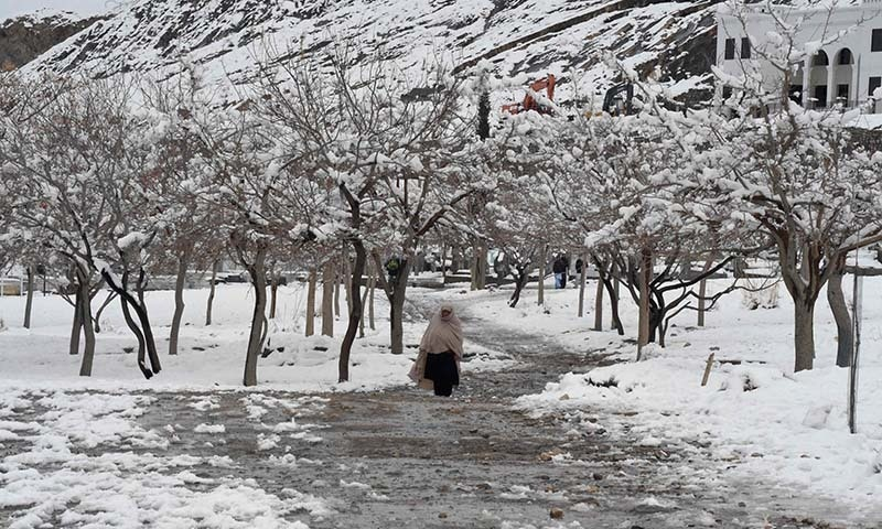 59 killed in Neelum Valley alone as death toll from weather-related incidents rises to 82