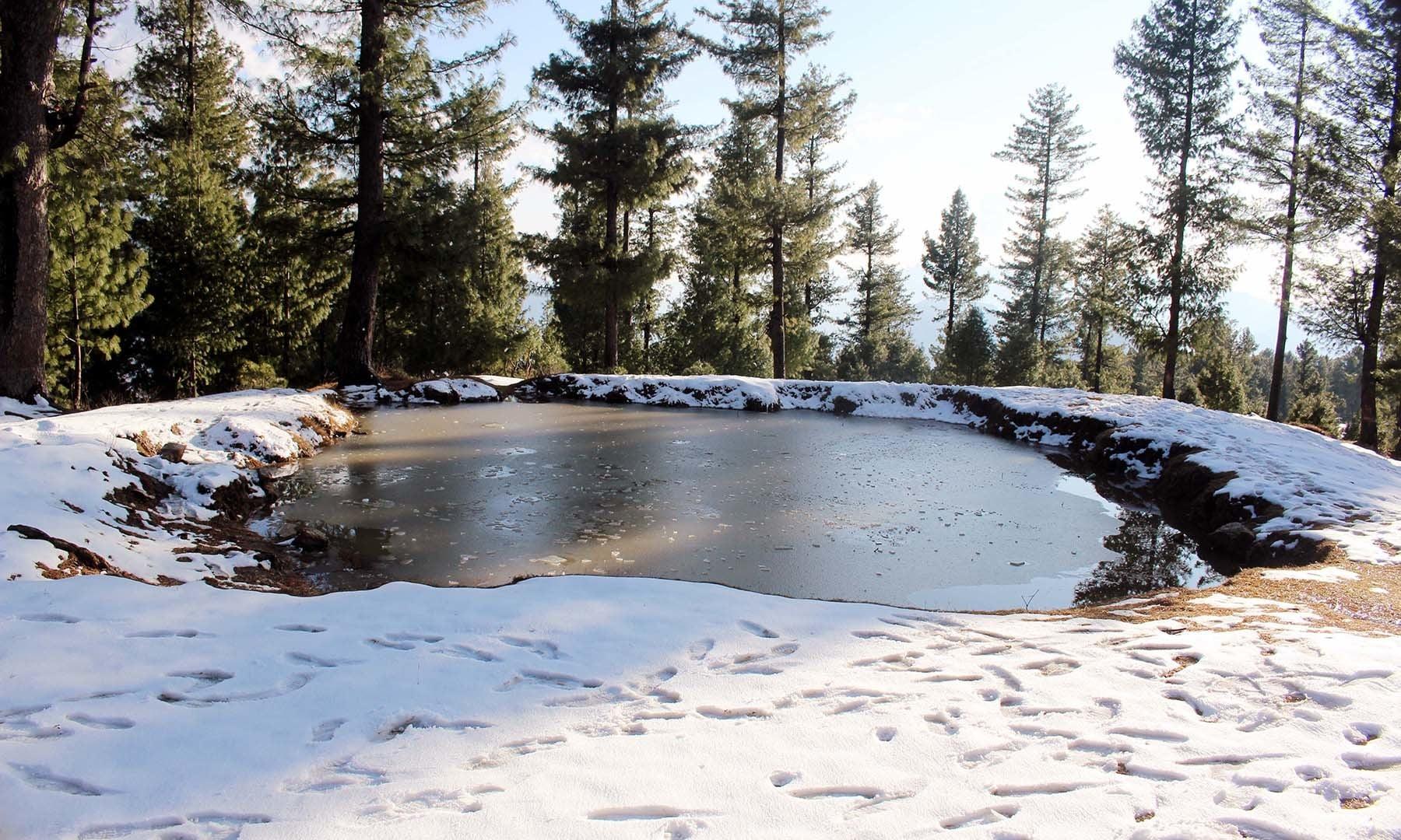 A pond in Jenako Maidan.