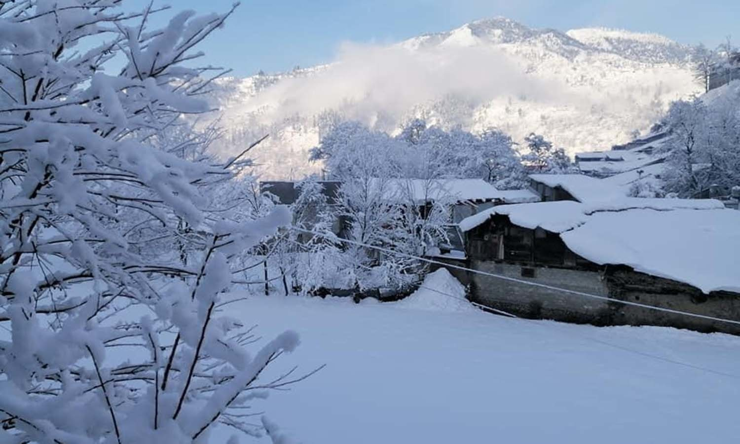 Days of snow accumulated over roofs and treetops in Shangla. — Umar Bacha