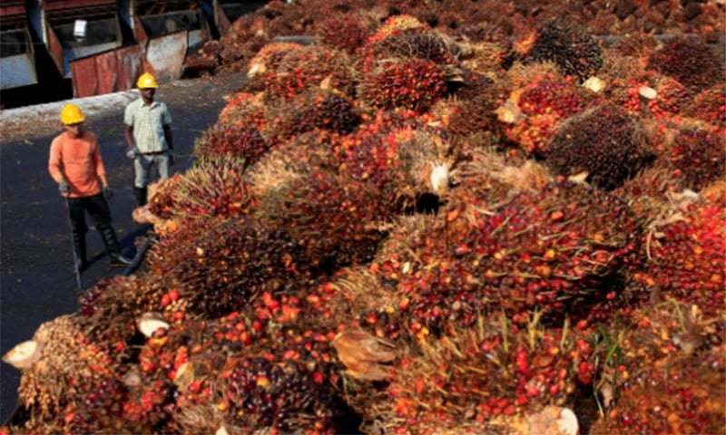 Malaysia, a Muslim-majority nation, is the second-biggest producer and exporter of palm oil. — Reuters/File