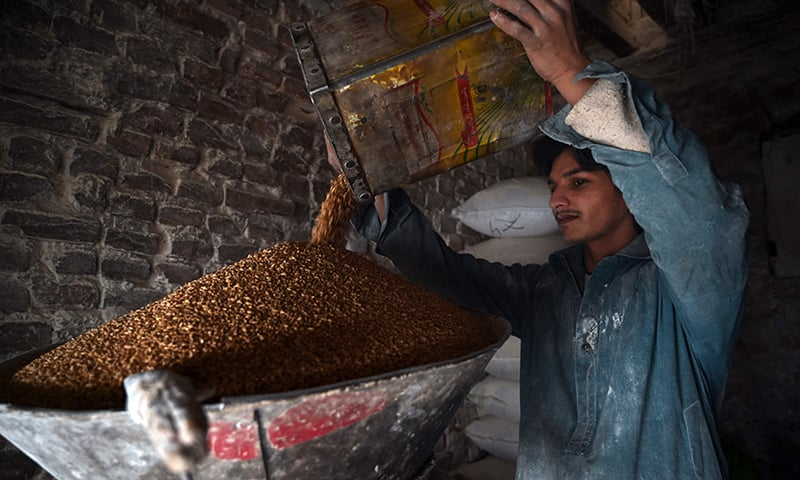 A labourer grinds wheat into flour at a market in Rawalpindi on January 20, 2020. — AFP