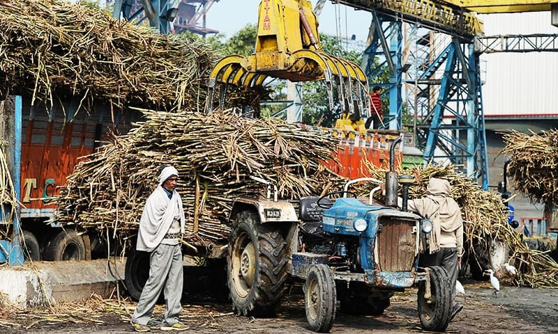 In this photograph taken on January 23, 2019, Indian farmers stand near a tractor loaded with sugarcane at the Triveni sugar refining factory in Sabitgarh village, in Bulandshahr district in the northern state of Uttar Pradesh. – AFP/File Photo