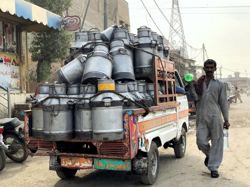 The colony provides milk to many across Karachi —*Image by Zofeen T. Ebrahim*