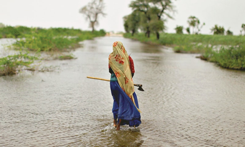 A Pakistani woman displaced by the floods walks along a flooded road holding an axe to cut wood in Digri district near Hyderabad.—File photo