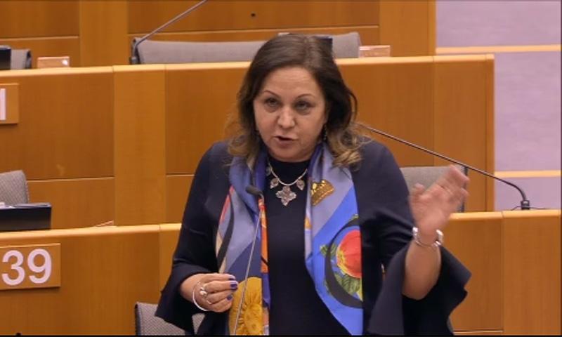S&D MEP of Indian origin Nina Gill presenting her views during the debate. — Screenshot from EU Parliament website