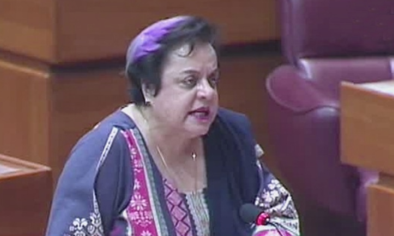 Mazari says parliamentarians should be equipped with facts on Kashmir and sent to raise Kashmir issue internationally. — DawnNewsTV