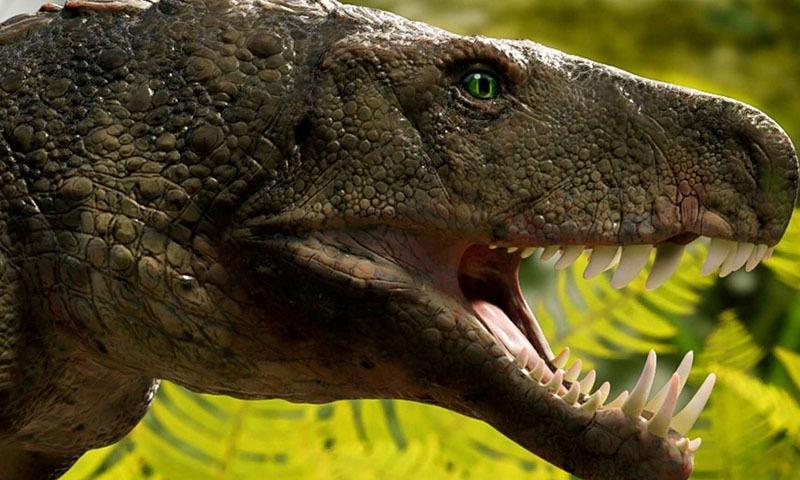 23 کروڑ سال پرانے ڈائنوسار کے شکاری 'مگرمچھ' کی ہڈیاں دریافت