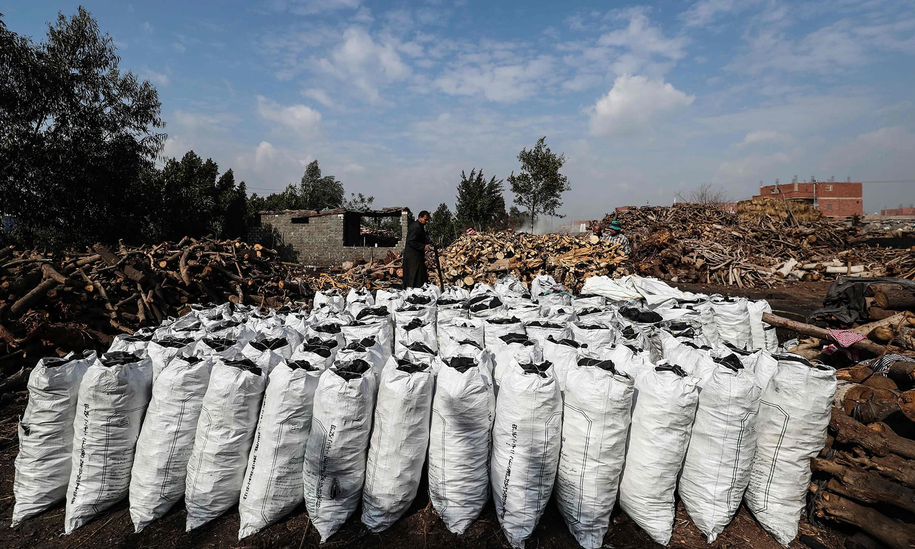 Egyptian labourers bill bags of charcoal at a factory in Egypt's Sharkia governorate. — AFP