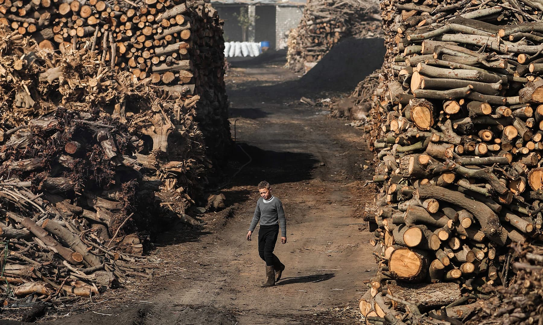 A young Egyptian labourer walks at a charcoal factory in Egypt's Sharkia governorate. — AFP