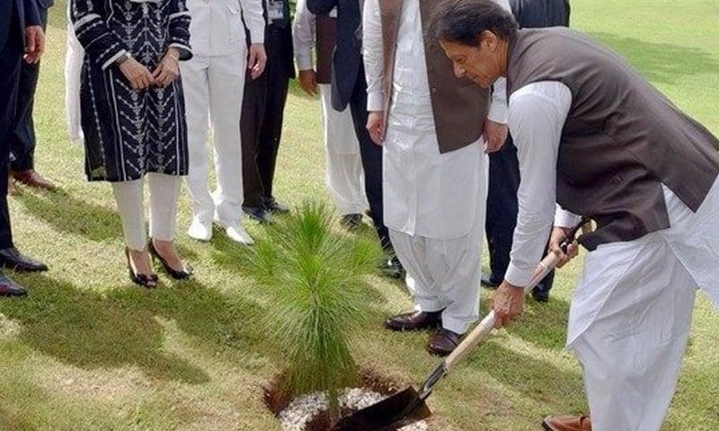 وزیر اعظم نے پودا لگا کر شجر کاری مہم کا آغاز کیا — فوٹو بشکریہ ریڈیو پاکستان