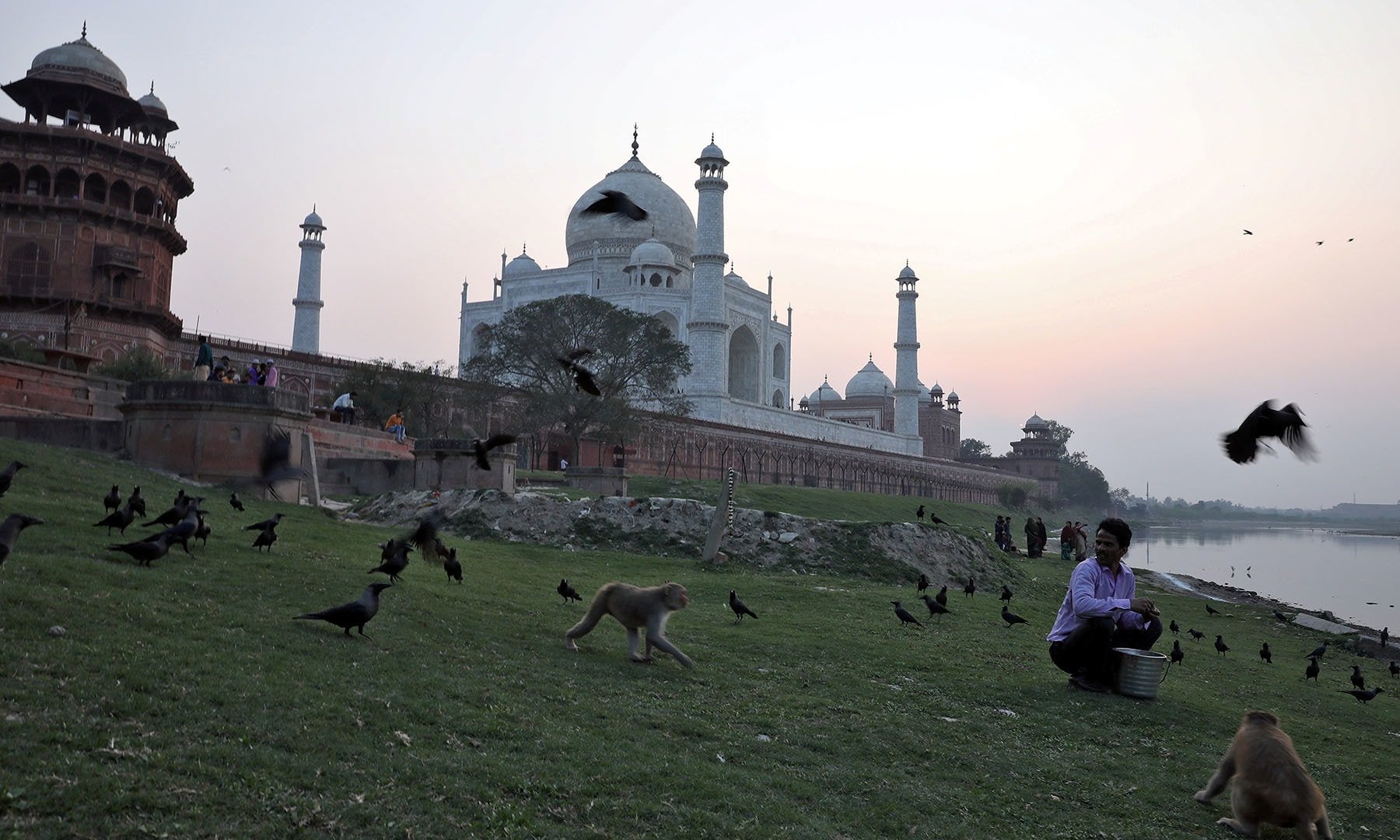 Monkeys walk as a man feeds birds outside the historic Taj Mahal, where US President Donald Trump and first lady Melania Trump are expected to visit, in Agra, India, on February 23. — Reuters