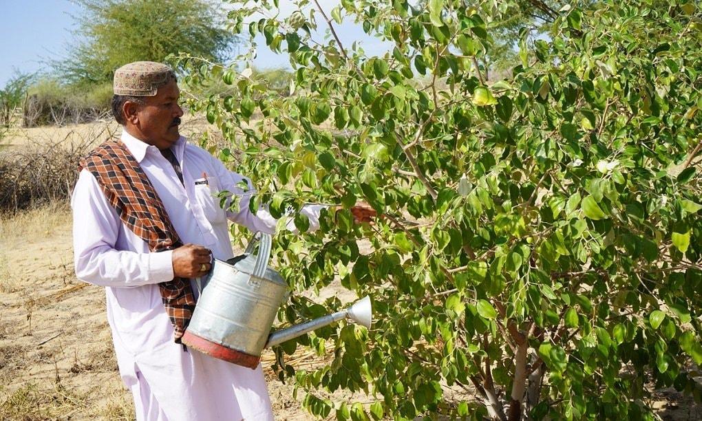 سمیرو میگھواڑ گاؤں میں خواتین کے اس پروجیکٹ کے مرکزی معاونت کاروں میں سے ایک ہیں—تصویر منوج گینانی