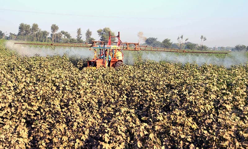 Committee observes that the country's agriculture has remained the most neglected sector during the last few decades. — APP/File