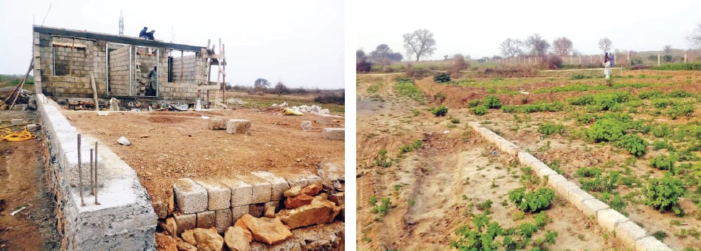 Unchecked construction around the ancient remains of Sirkap, the second  city of Taxila, has endangered the world heritage site. — Dawn