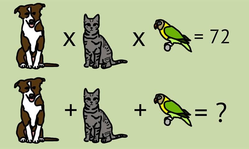 کیا اس دلچسپ پہیلی کا جواب دے سکتے ہیں؟