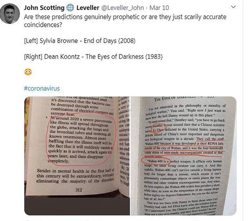 ایک اور امریکی ٹوئٹر صارف نے مذکورہ کتاب سمیت ایک اور کتاب کا ذکر بھی کیا—اسکرین شاٹ/ ڈیلی میل